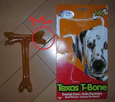デンタル用の骨