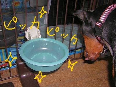 食洗機ジュニア