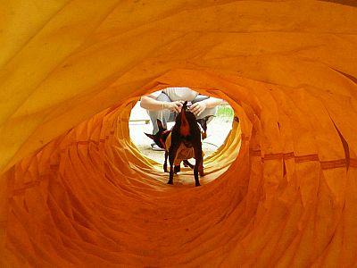 トンネル中も~クンクンクン