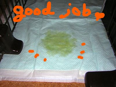 Good Job♪